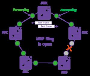 Fig 2. MRP ring open
